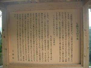 2010_1006_112434cimg0061