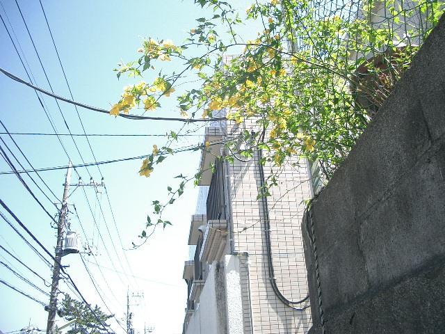 2011_0413_115502cimg0350