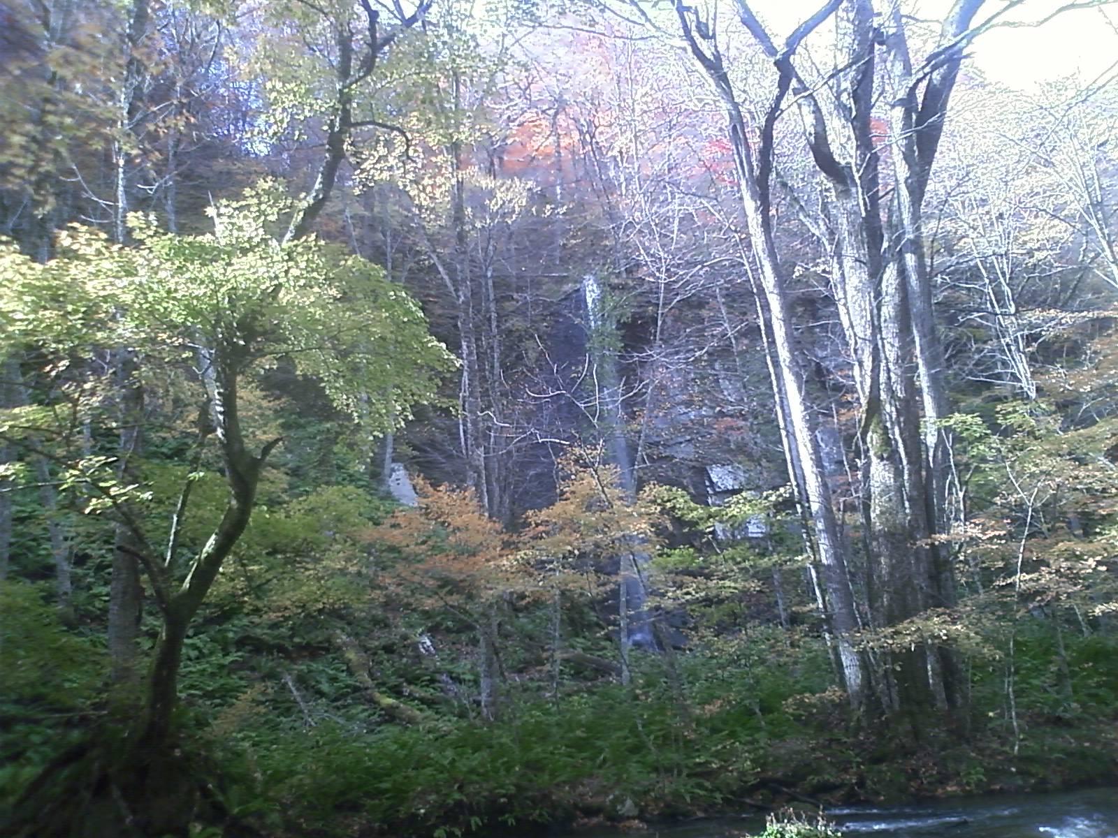 白糸の滝 奥入瀬渓谷